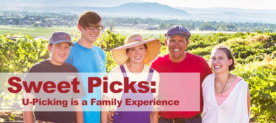 u-picking is a family experience