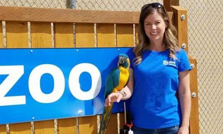 Laura Vanderbeek: Service–Not Just 'for the Birds'