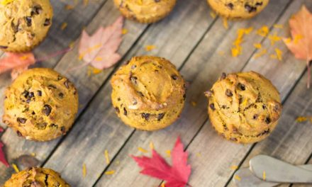The Best Pumpkin Chocolate Chip Muffins