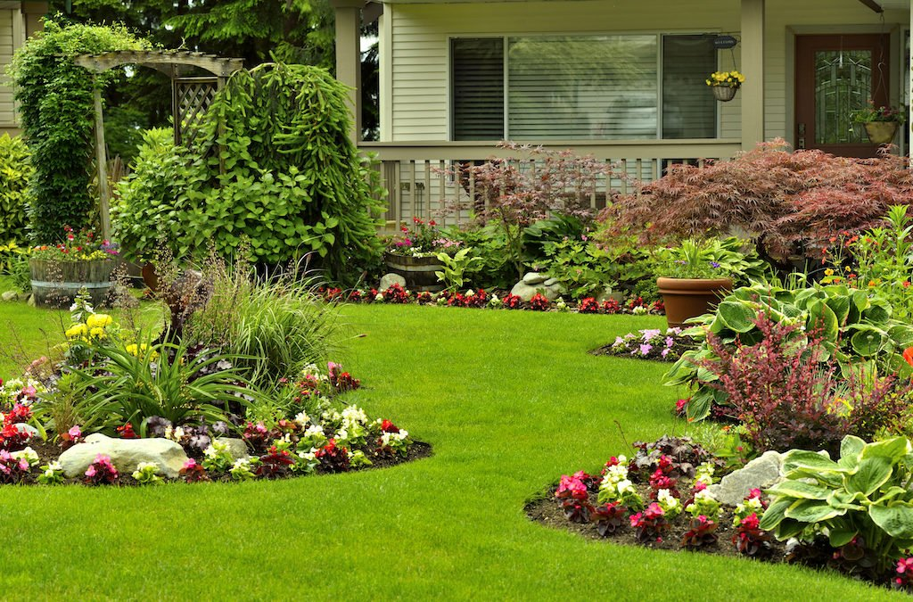 The Rules of Landscaping