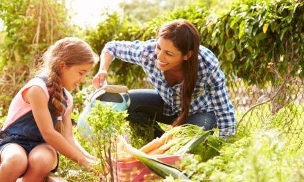 Three Ways to Maximize Your Garden