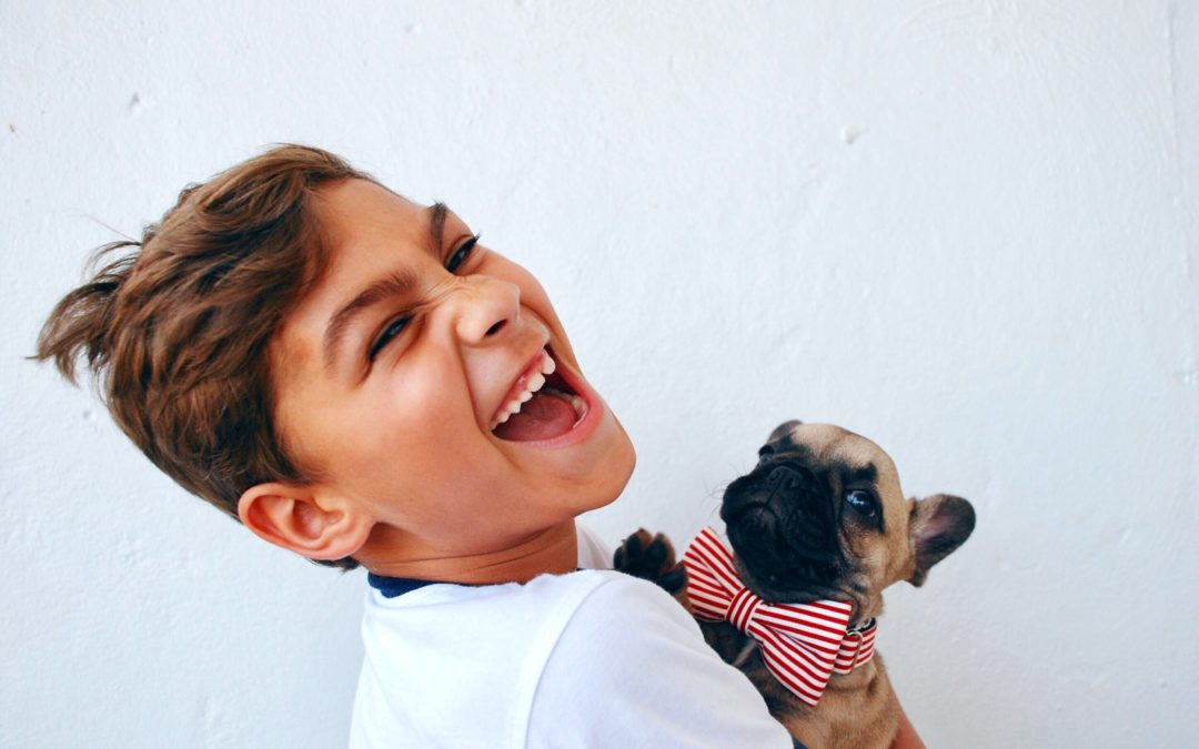 Create a Pet Emergency Kit