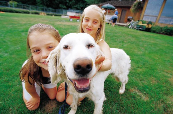 The Family Dog: A Secret to Health and Happiness?