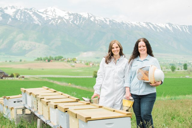 The Bees Knees: Cache Valley Sisters Take On Beekeeping