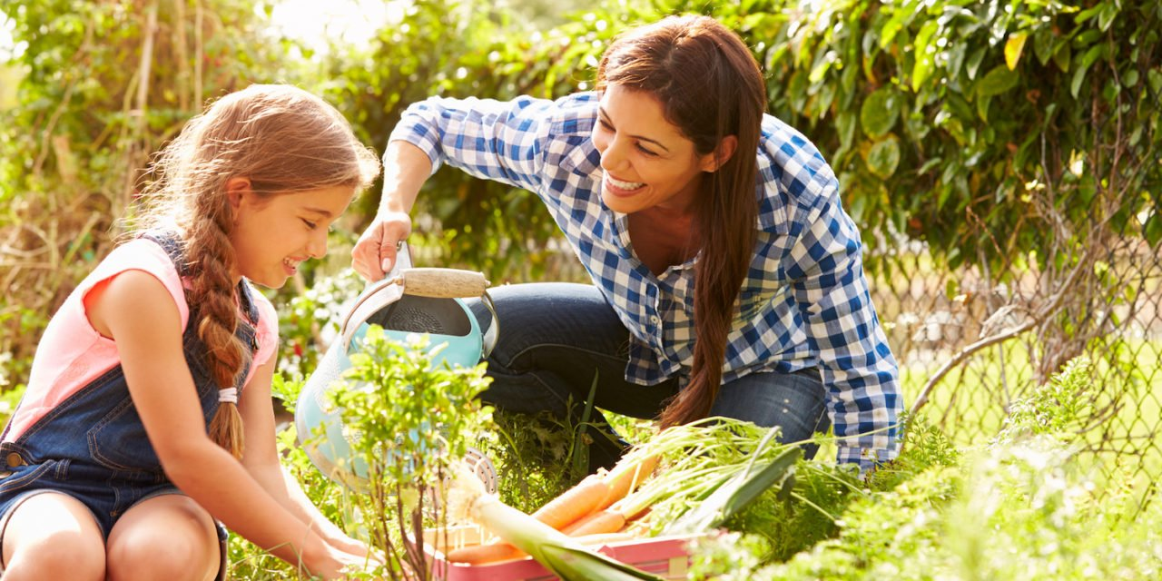 Three Ways to Maximize Your Garden