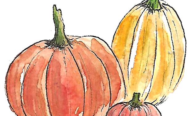 12 Things to Do in Cache Valley This Fall