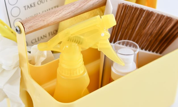 Kids Cleaning Caddy Essentials